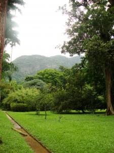 04_jardinbotanico1