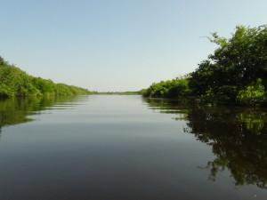 05_navegando pelo rio negro (1)