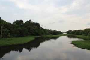 05_navegando pelo rio negro (4)
